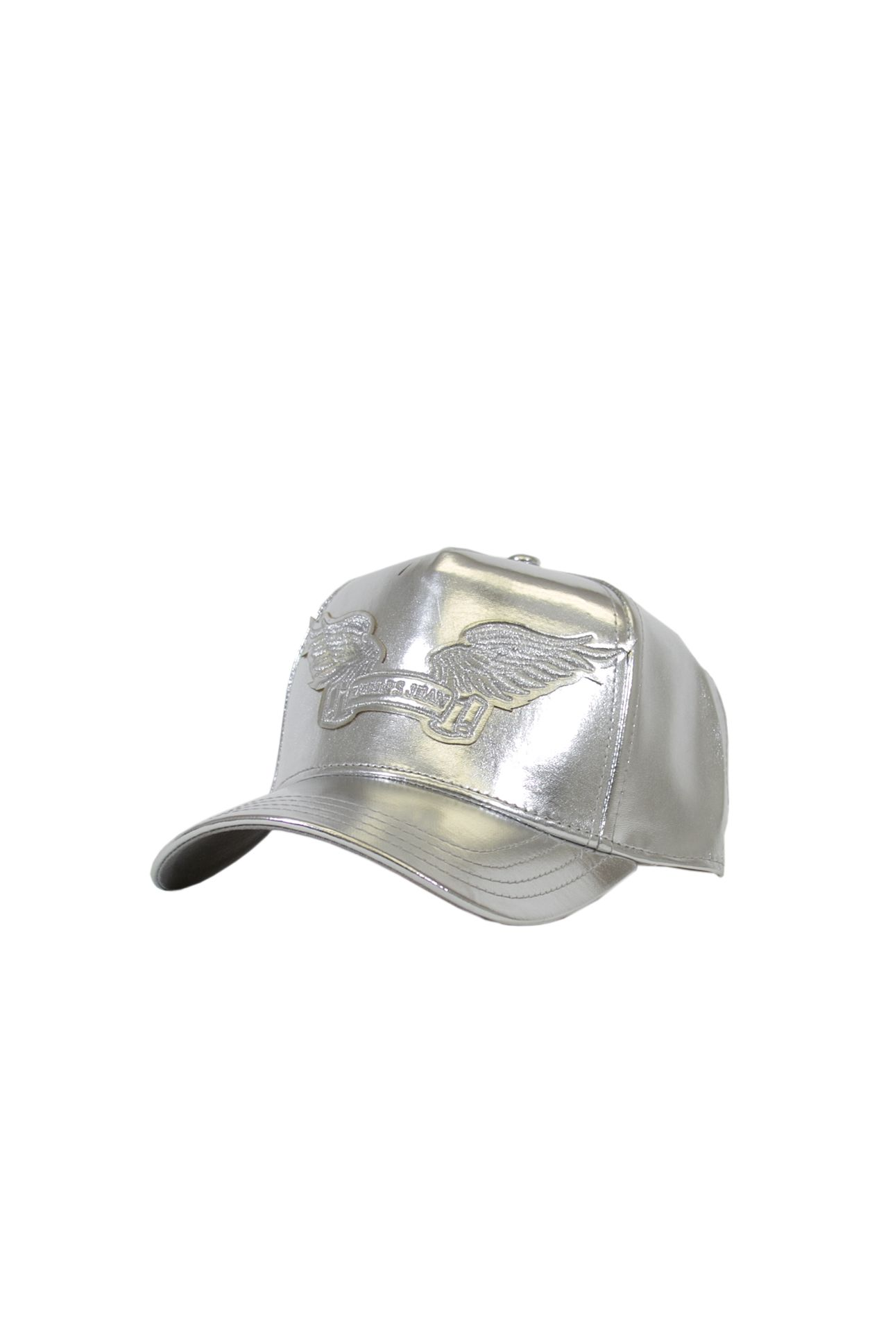 METALLIC SILVER WITH SILVER WINGS